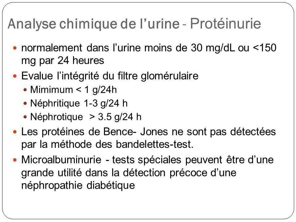 Analyse chimique de l'urine - Protéinurie