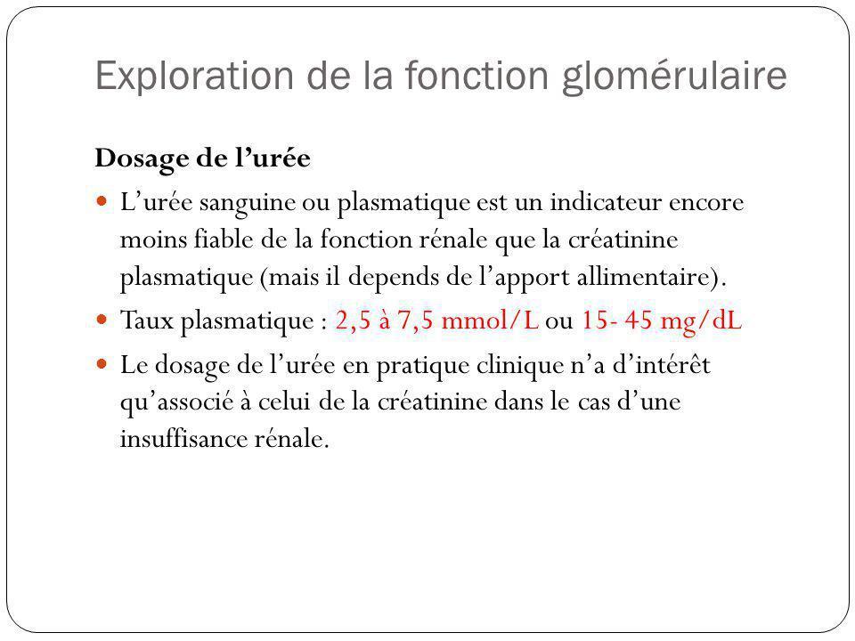 Exploration de la fonction glomérulaire