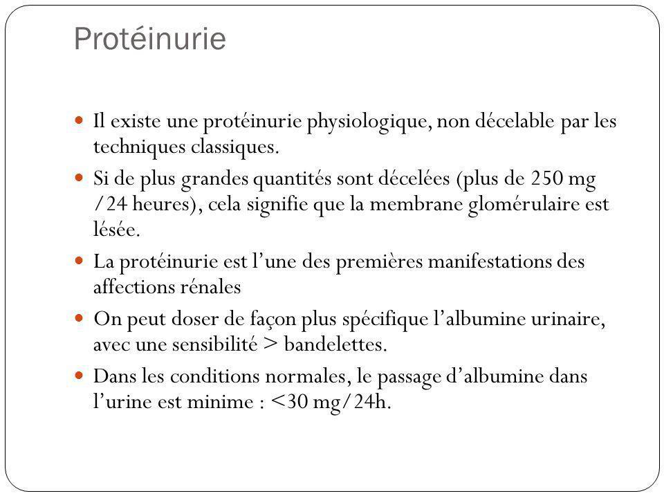Protéinurie Il existe une protéinurie physiologique, non décelable par les techniques classiques.