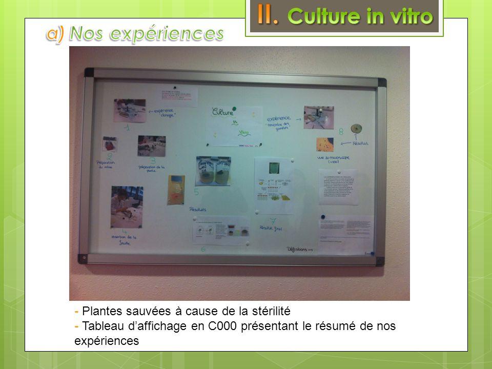 II. Culture in vitro a) Nos expériences