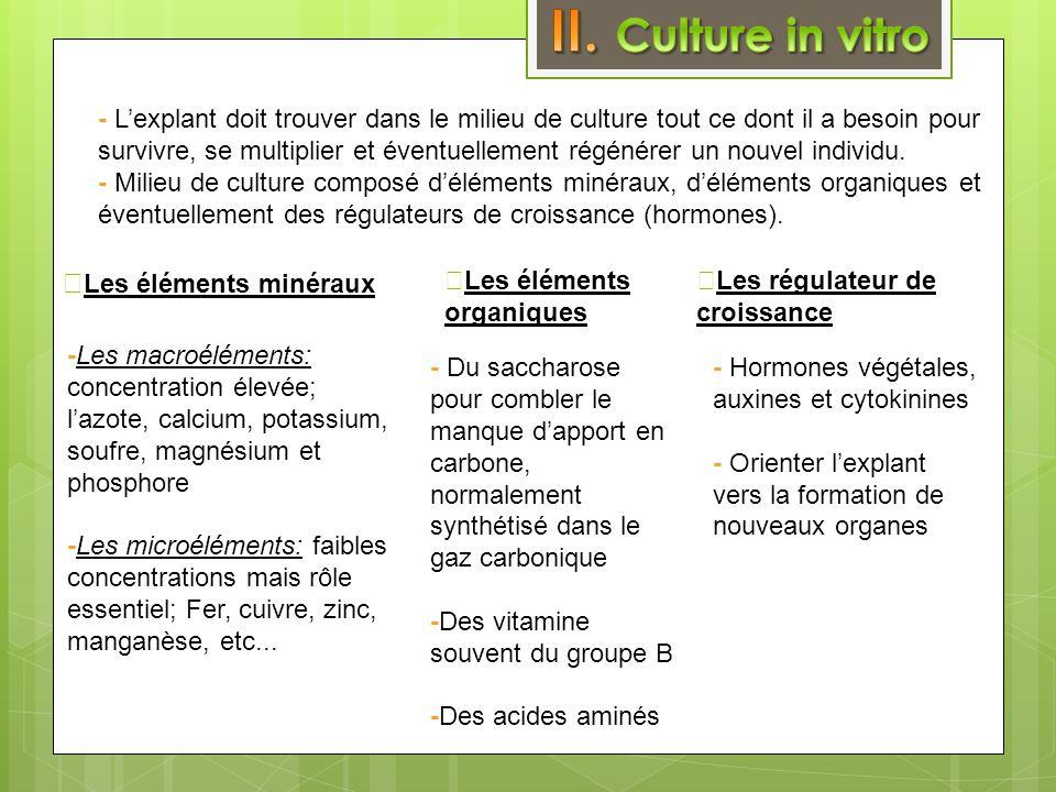 II. Culture in vitro ⓐLes éléments minéraux