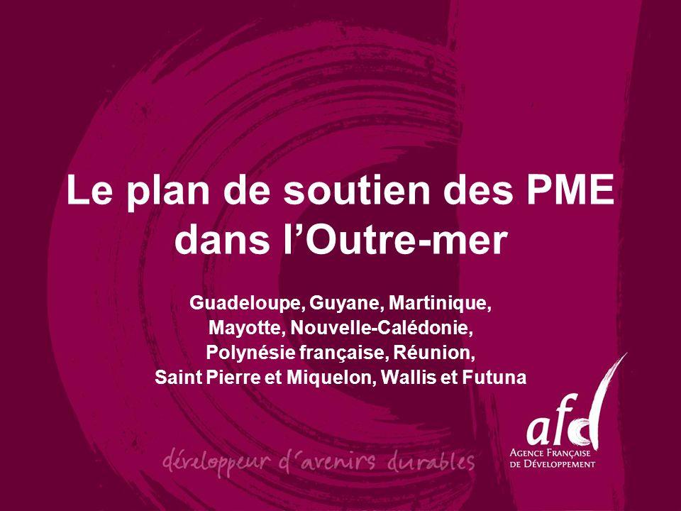 Le plan de soutien des PME dans l'Outre-mer