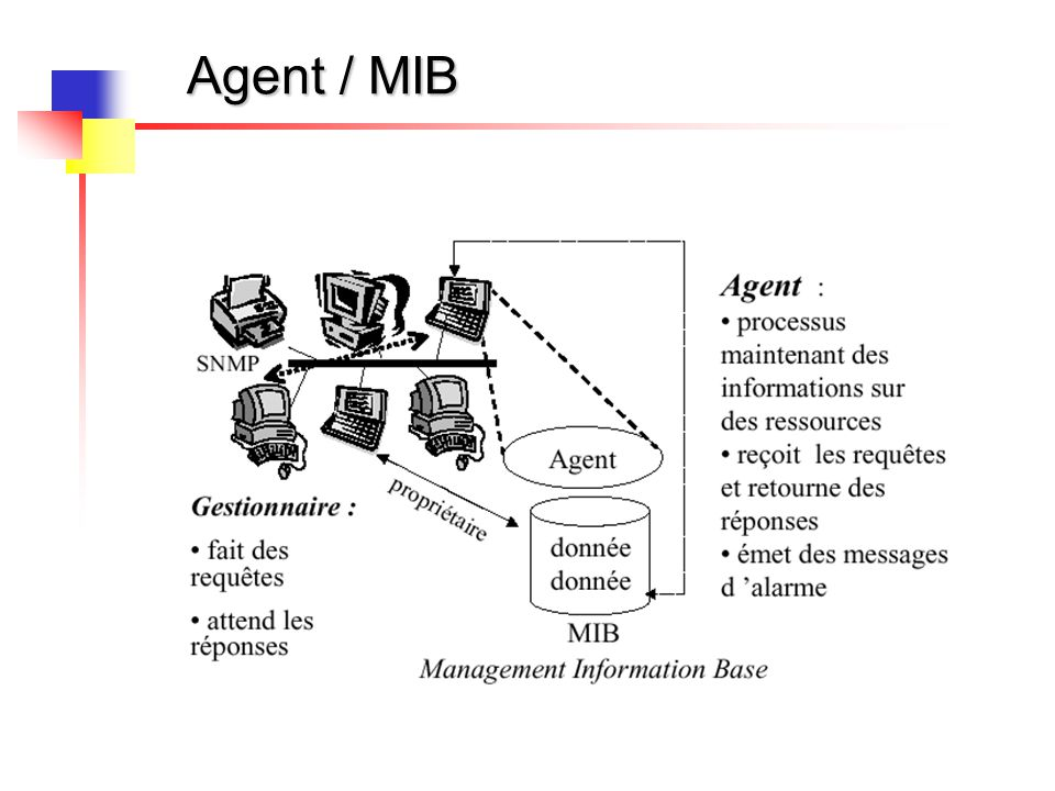 Agent / MIB