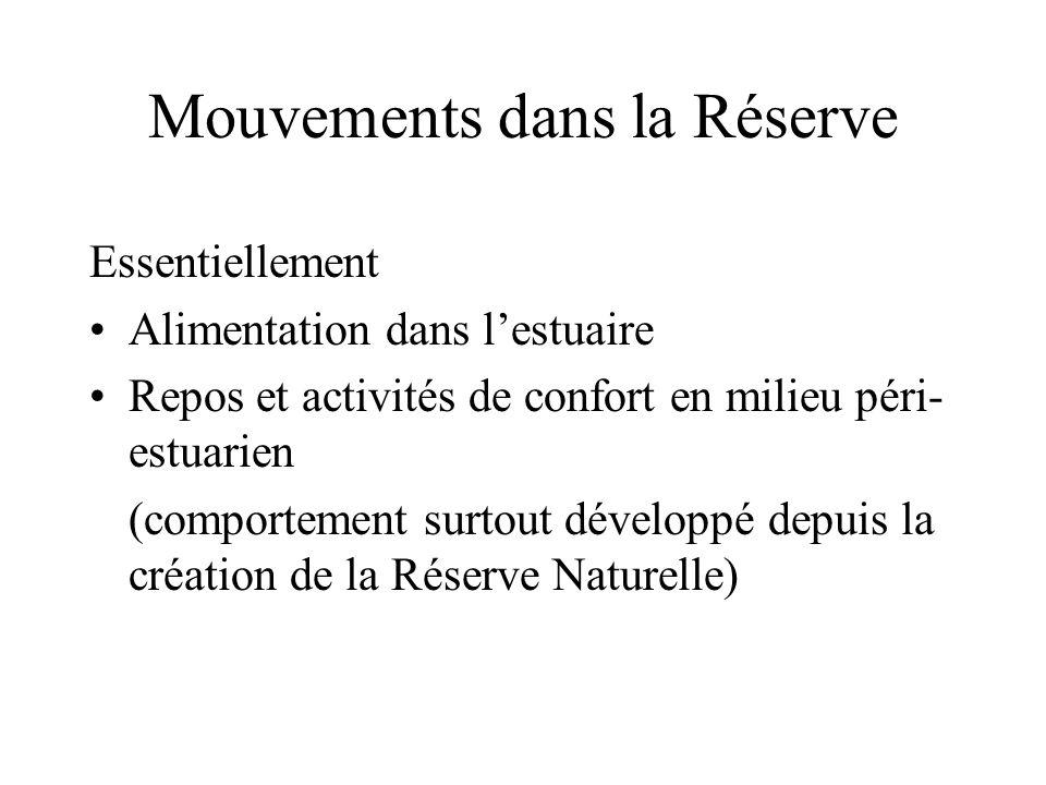 Mouvements dans la Réserve