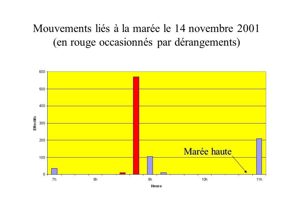 Mouvements liés à la marée le 14 novembre 2001 (en rouge occasionnés par dérangements)