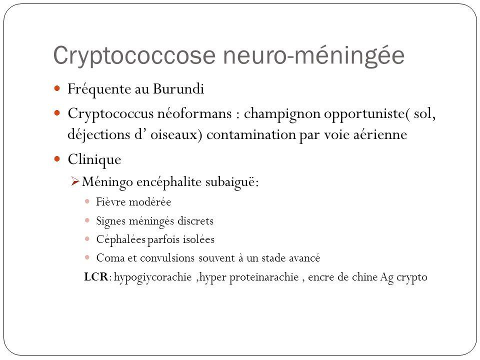 Cryptococcose neuro-méningée