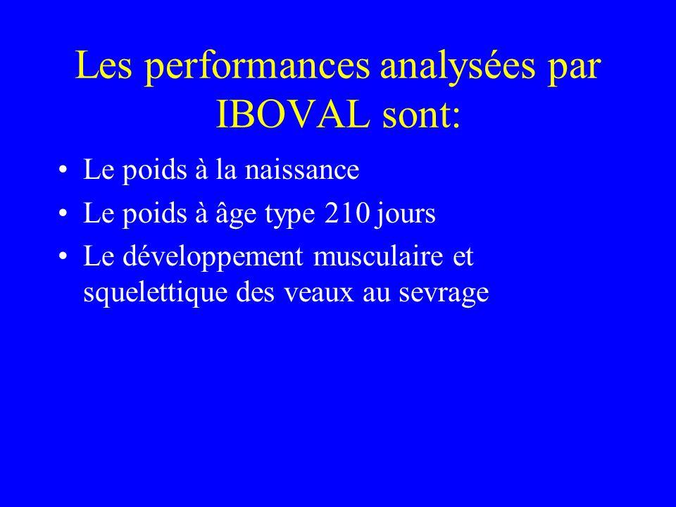 Les performances analysées par IBOVAL sont: