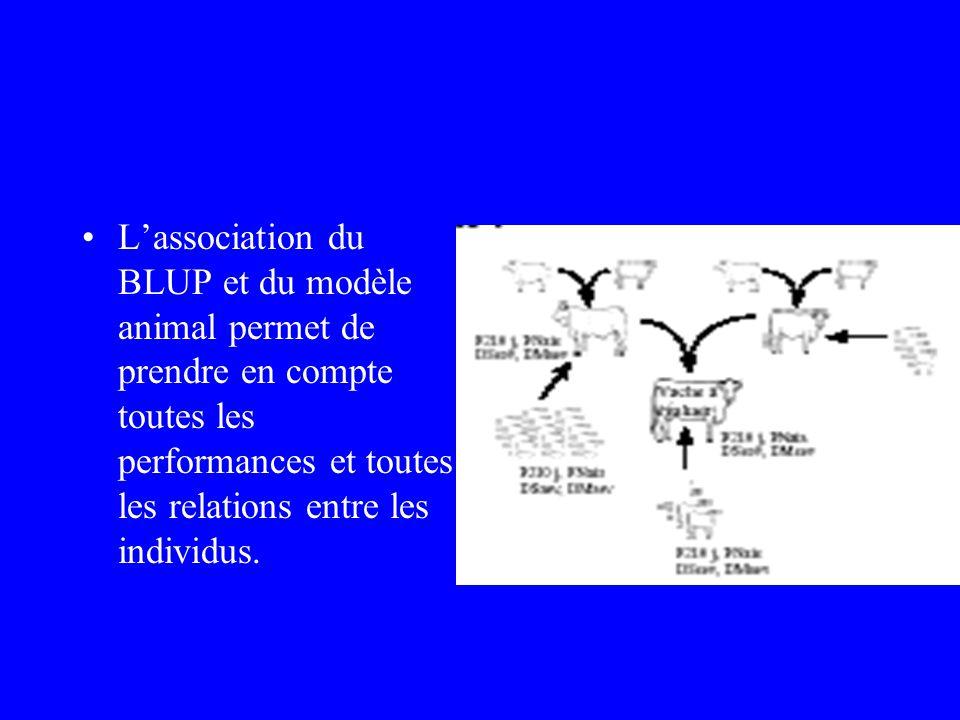 L'association du BLUP et du modèle animal permet de prendre en compte toutes les performances et toutes les relations entre les individus.