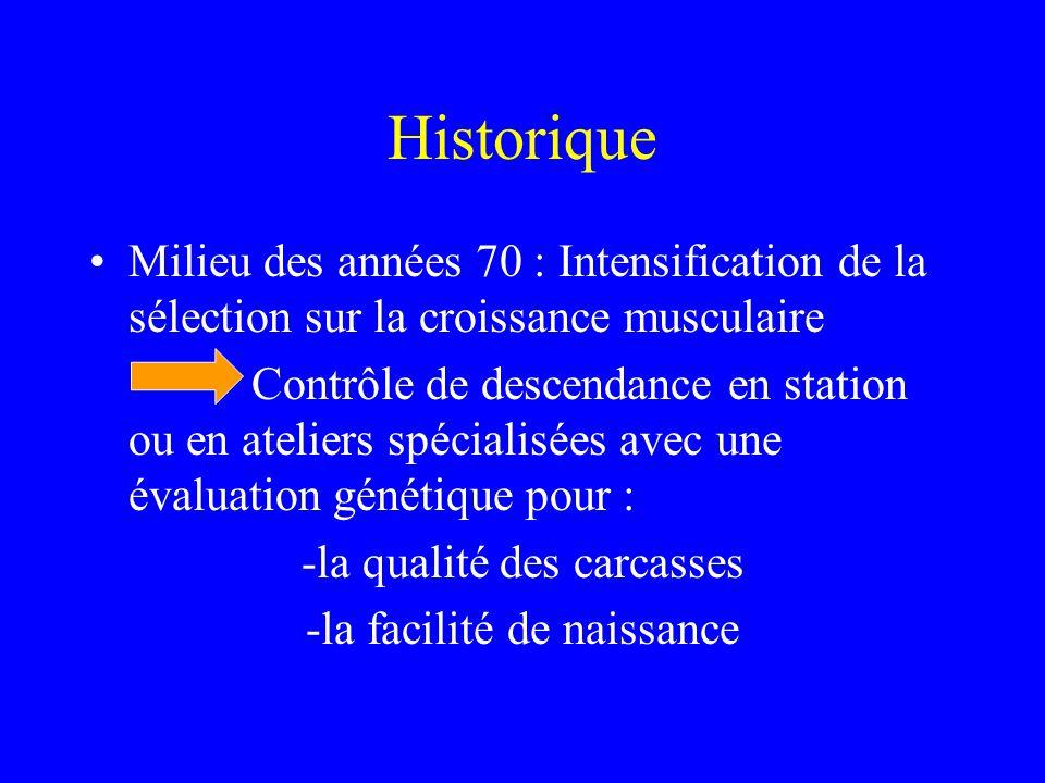 Historique Milieu des années 70 : Intensification de la sélection sur la croissance musculaire.