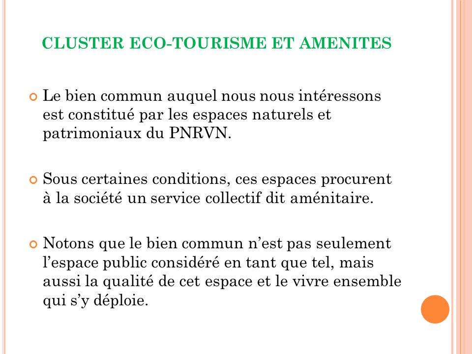 CLUSTER ECO-TOURISME ET AMENITES