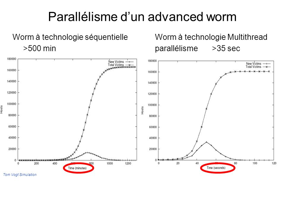 Parallélisme d'un advanced worm
