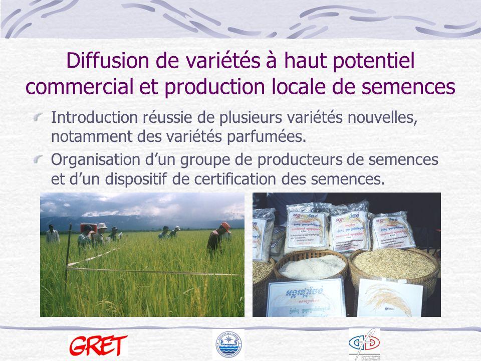 Diffusion de variétés à haut potentiel commercial et production locale de semences