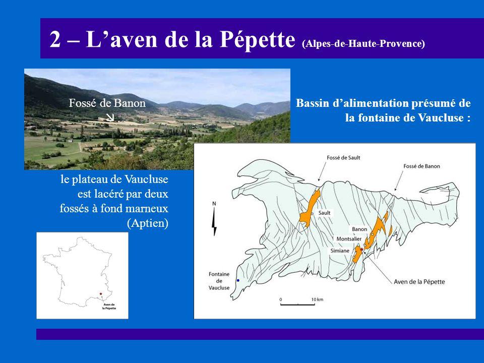 2 – L'aven de la Pépette (Alpes-de-Haute-Provence)