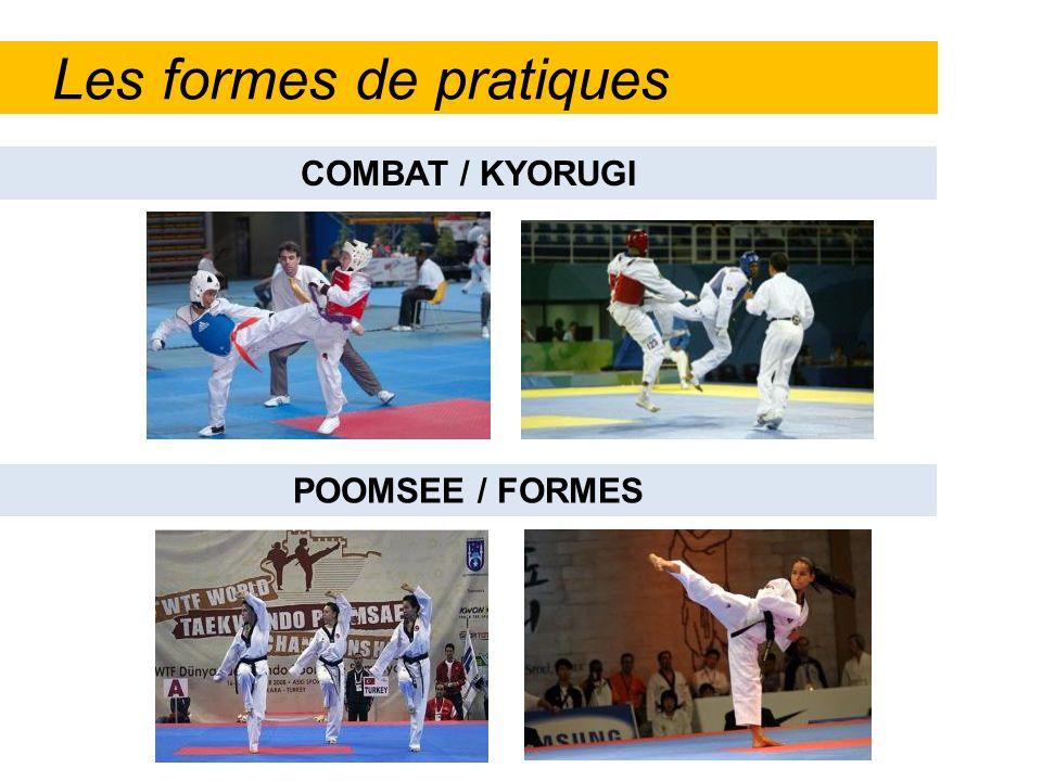 Les formes de pratiques
