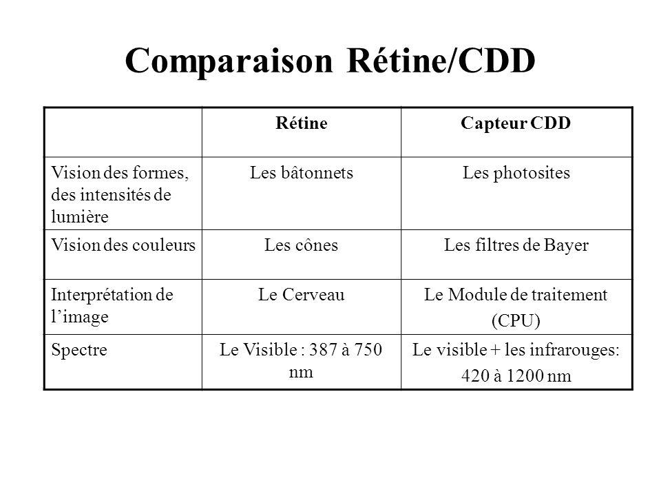 Comparaison Rétine/CDD