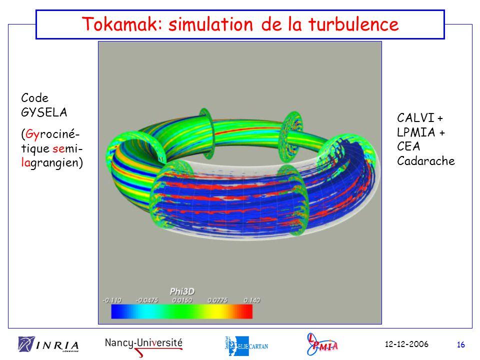 Tokamak: simulation de la turbulence