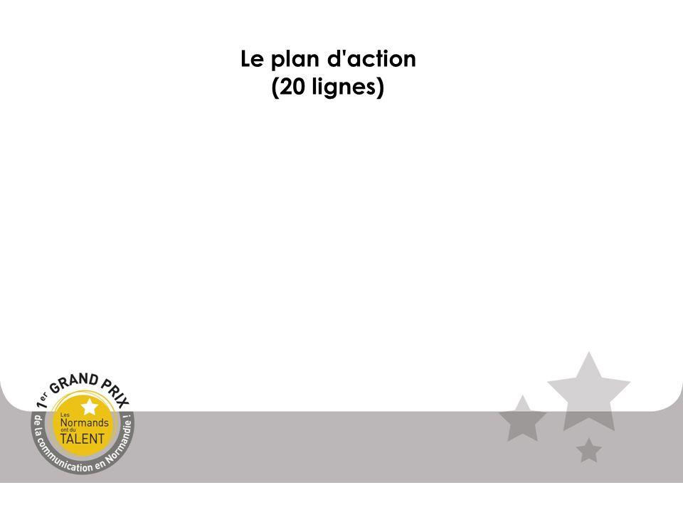Le plan d action (20 lignes)