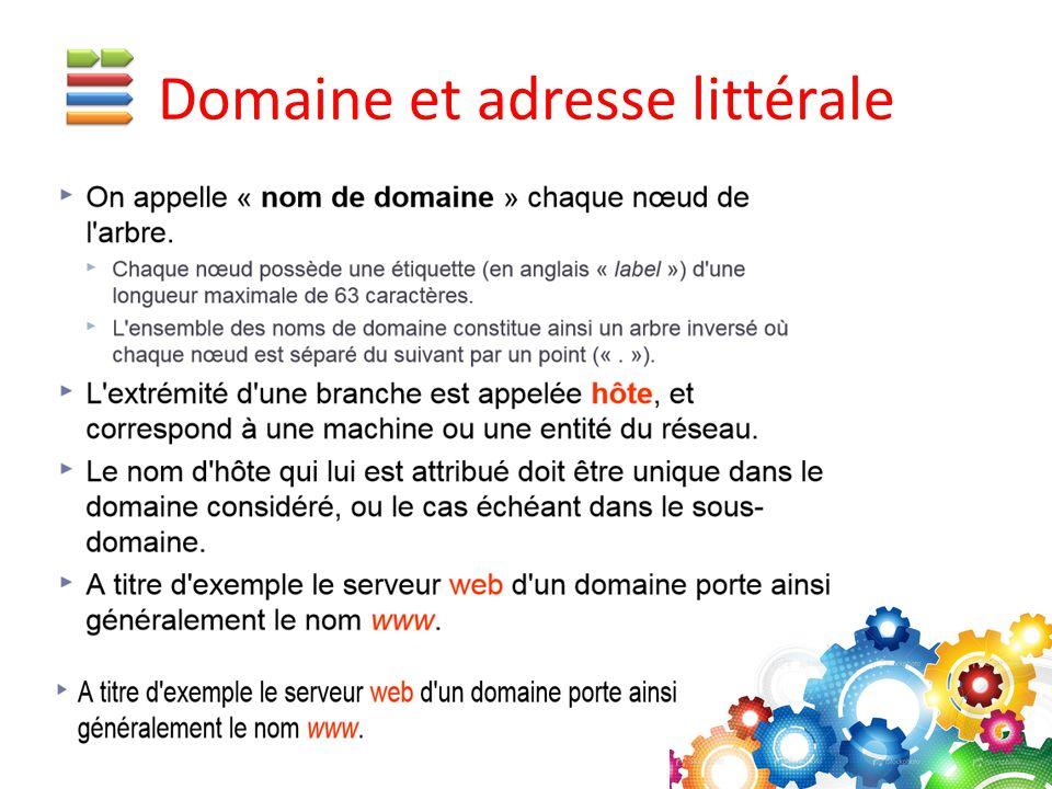 Domaine et adresse littérale