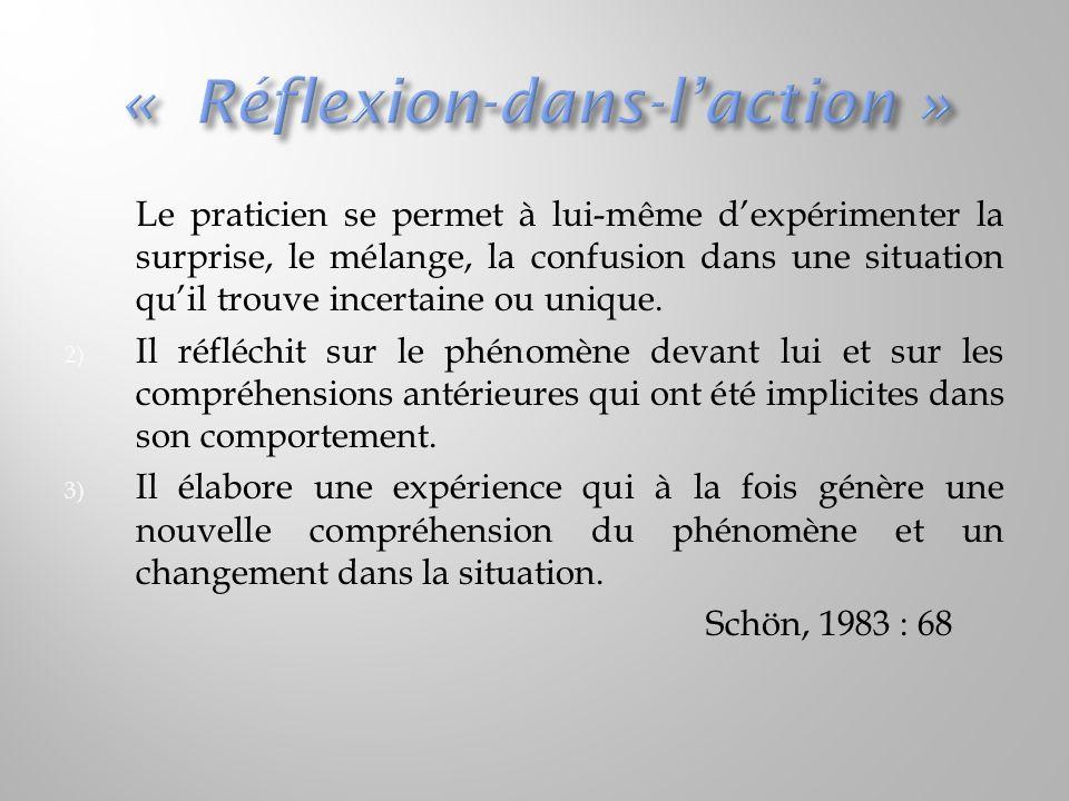 « Réflexion-dans-l'action »
