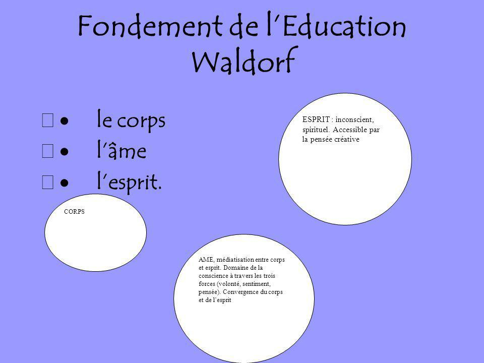 Fondement de l'Education Waldorf