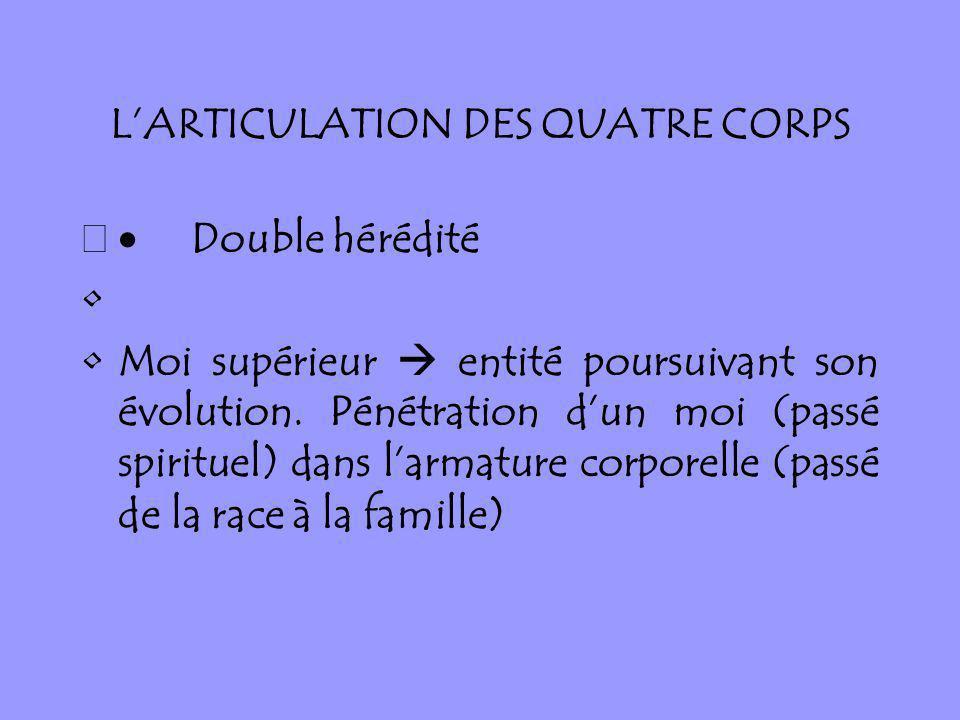 L'ARTICULATION DES QUATRE CORPS