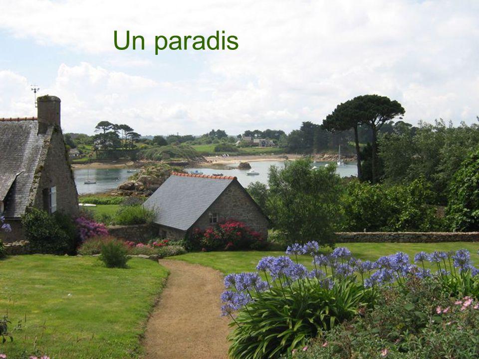 Un paradis