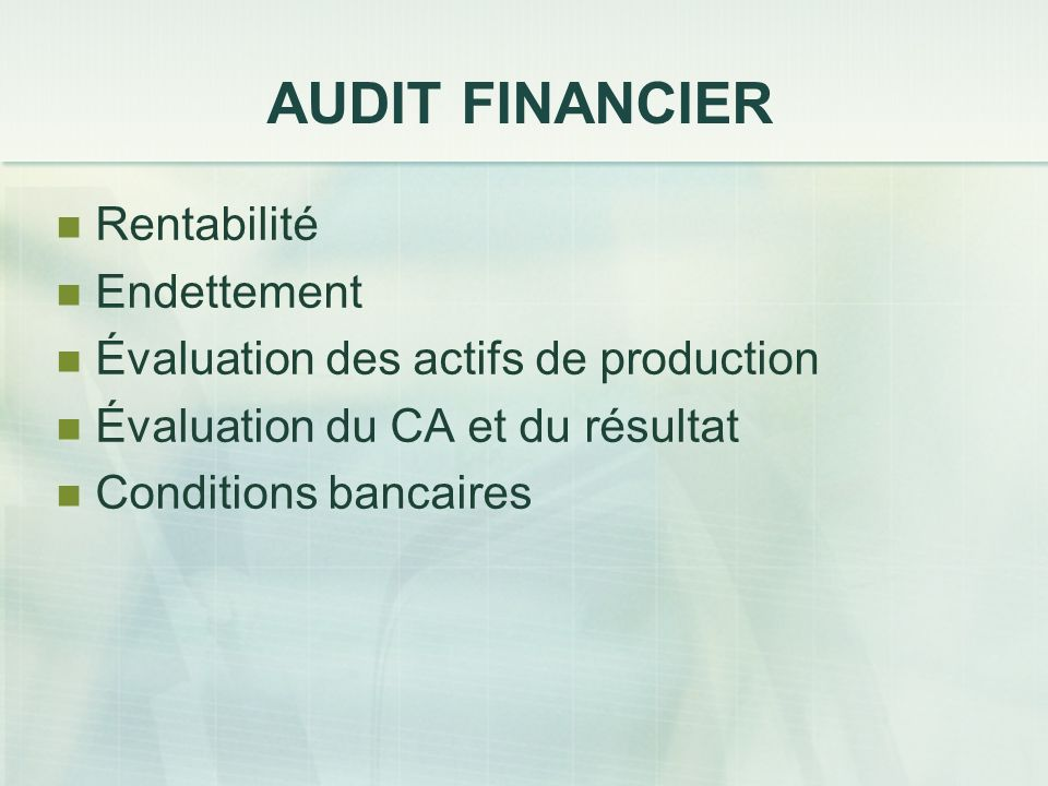 AUDIT FINANCIER Rentabilité Endettement