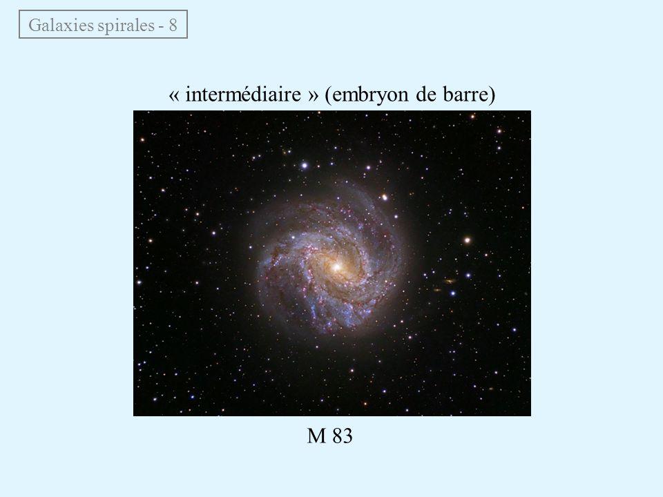 « intermédiaire » (embryon de barre)