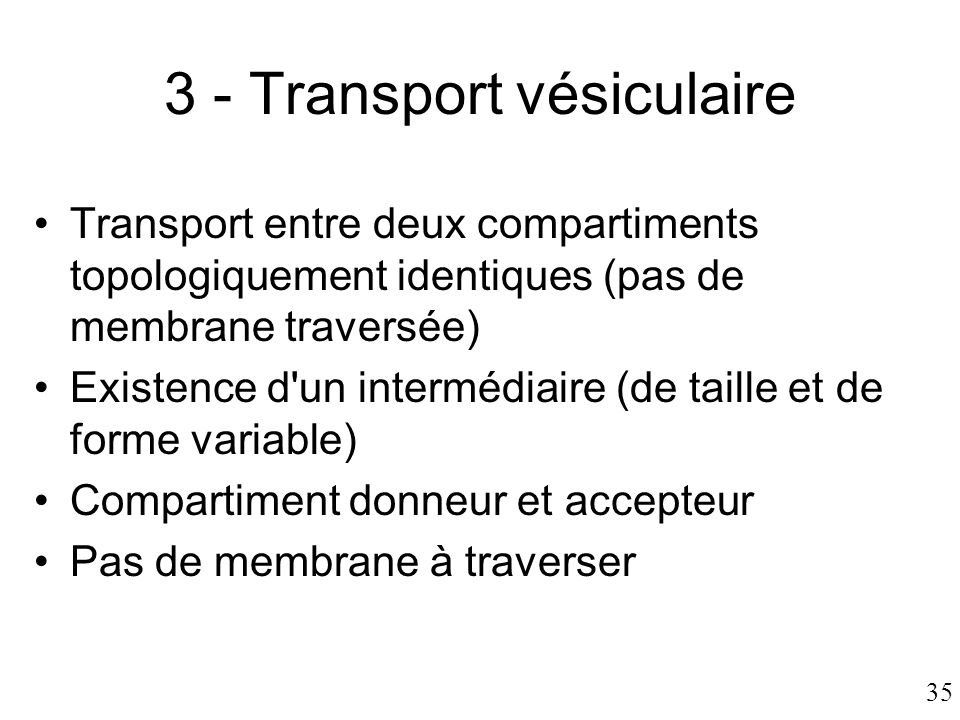 3 - Transport vésiculaire