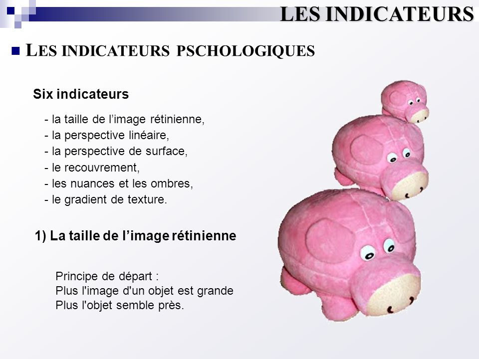 LES INDICATEURS LES INDICATEURS PSCHOLOGIQUES Six indicateurs