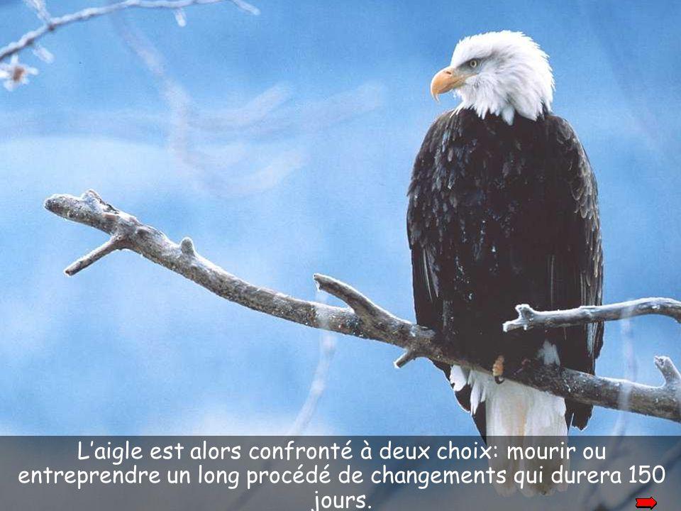 okay L'aigle est alors confronté à deux choix: mourir ou entreprendre un long procédé de changements qui durera 150 jours.
