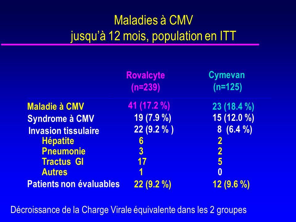 Maladies à CMV jusqu'à 12 mois, population en ITT