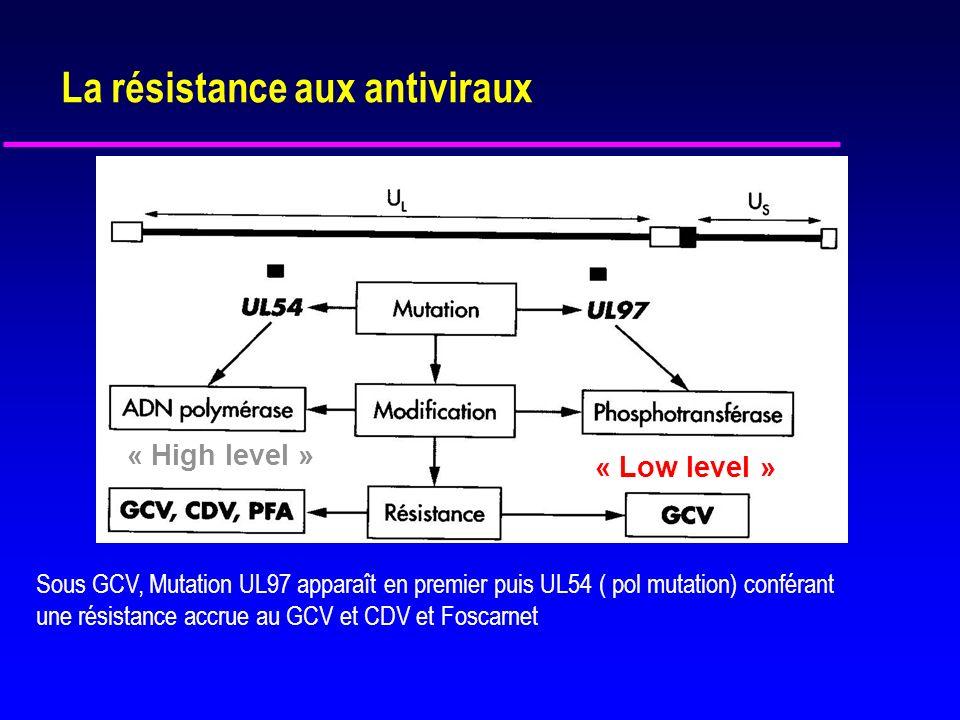 La résistance aux antiviraux