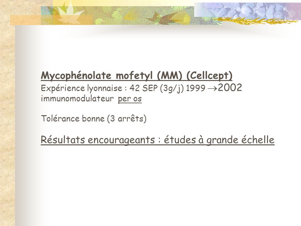 Mycophénolate mofetyl (MM) (Cellcept)