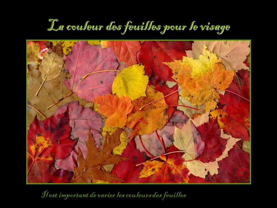 La couleur des feuilles pour le visage
