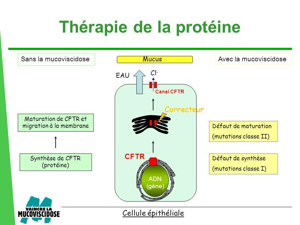 Thérapie de la protéine