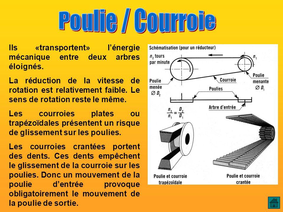 Poulie / Courroie Poulie / Courroie