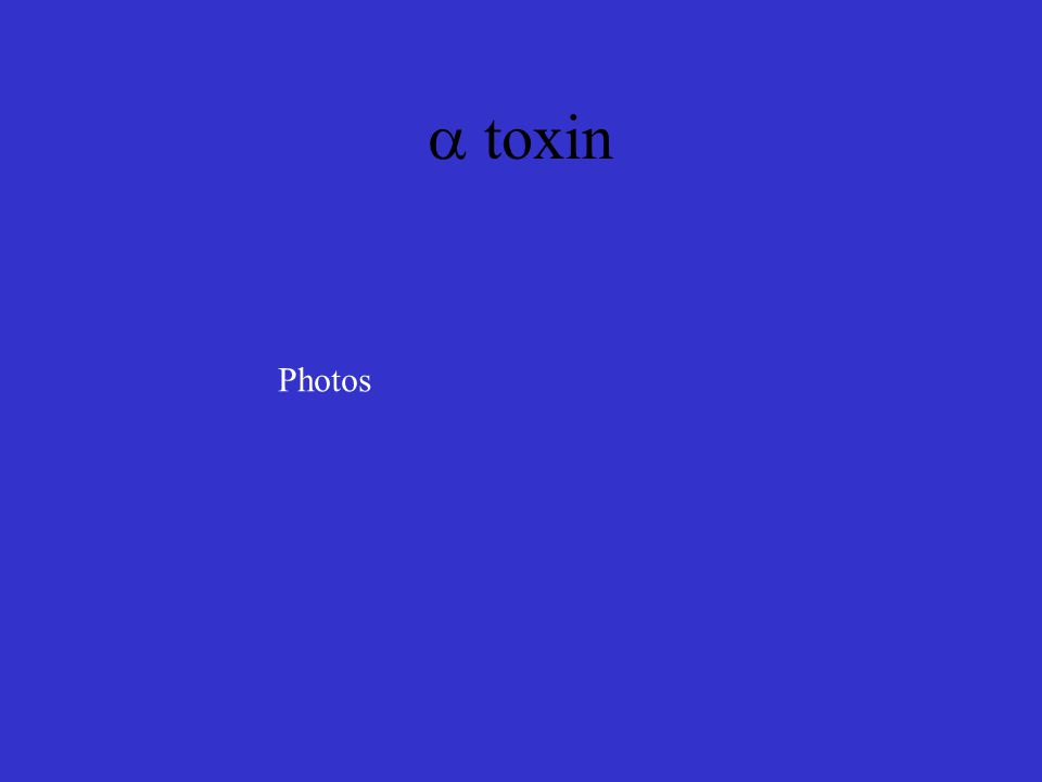 a toxin Photos