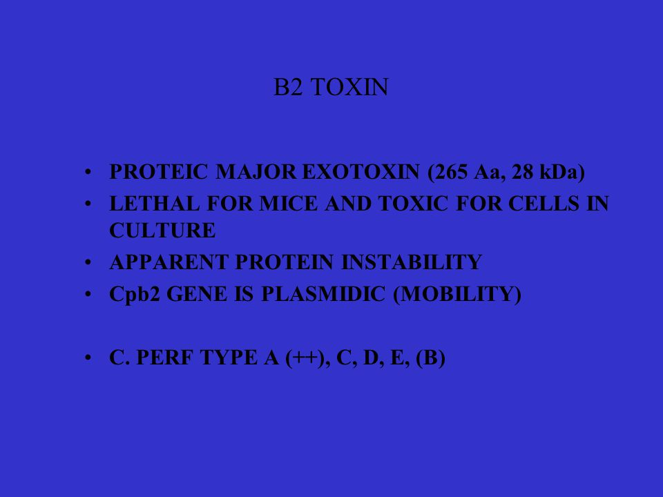 B2 TOXIN PROTEIC MAJOR EXOTOXIN (265 Aa, 28 kDa)