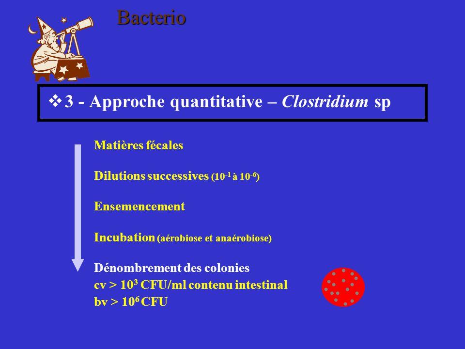 Bacterio 3 - Approche quantitative – Clostridium sp. Matières fécales. Dilutions successives (10-1 à 10-6)