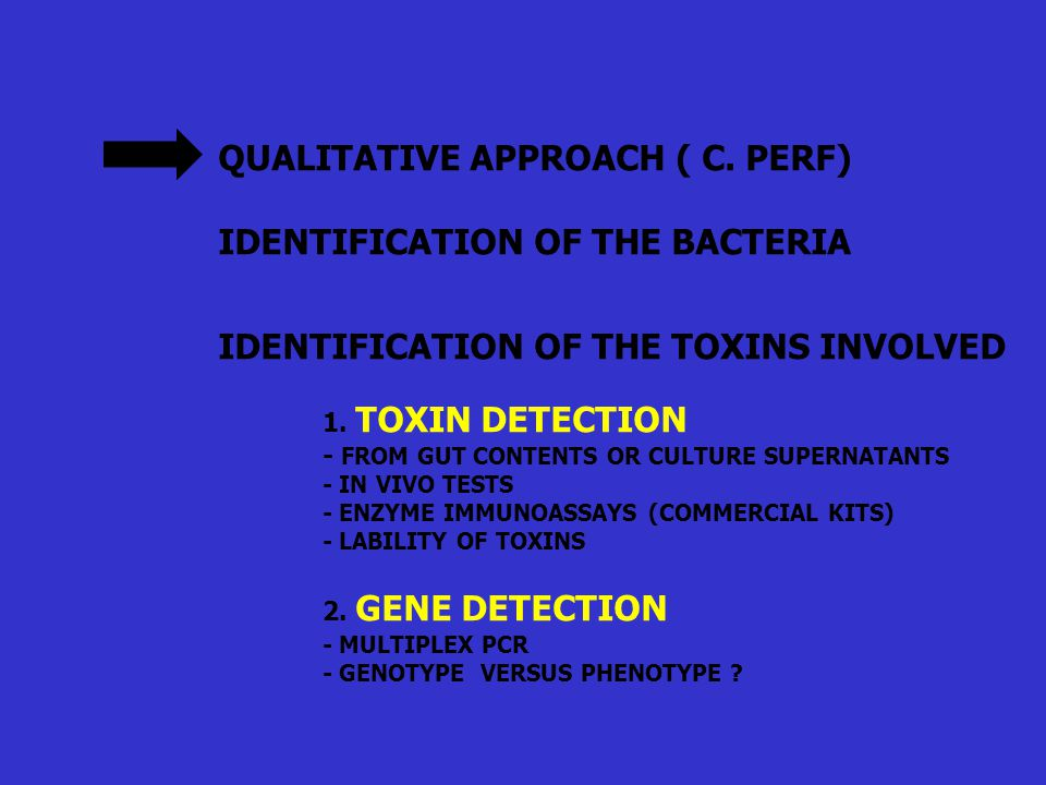 QUALITATIVE APPROACH ( C. PERF) IDENTIFICATION OF THE BACTERIA