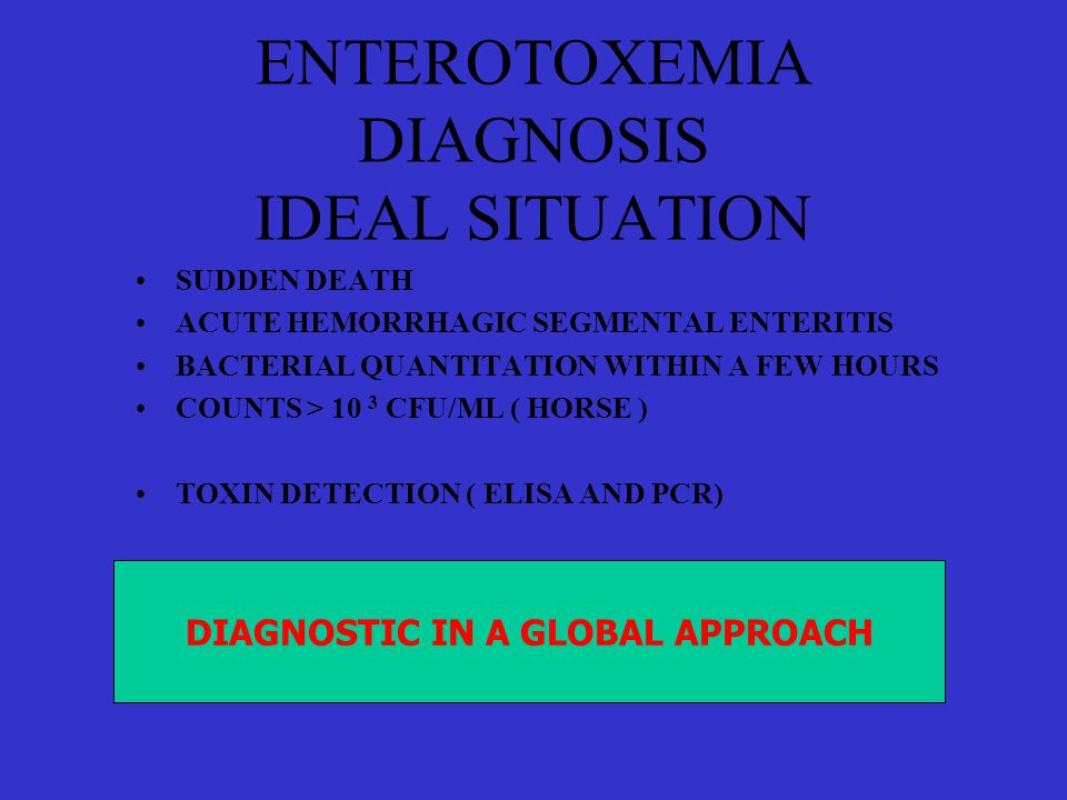 ENTEROTOXEMIA DIAGNOSIS IDEAL SITUATION