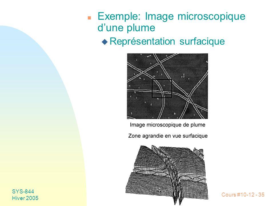 Exemple: Image microscopique d'une plume