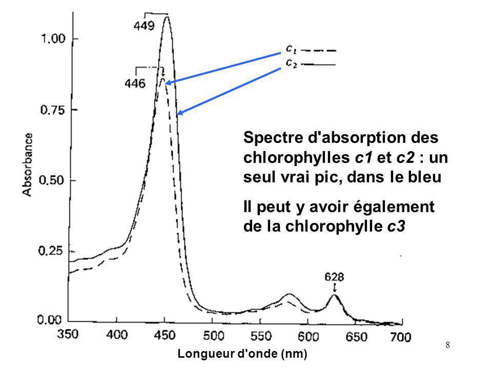 Il peut y avoir également de la chlorophylle c3