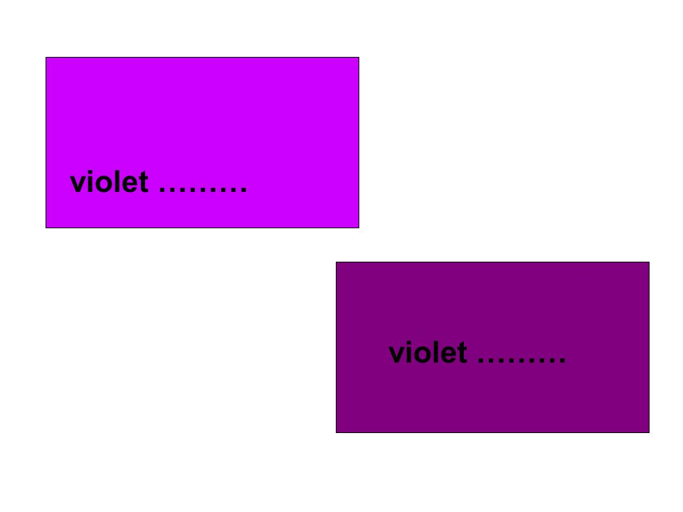 violet ……… violet ………