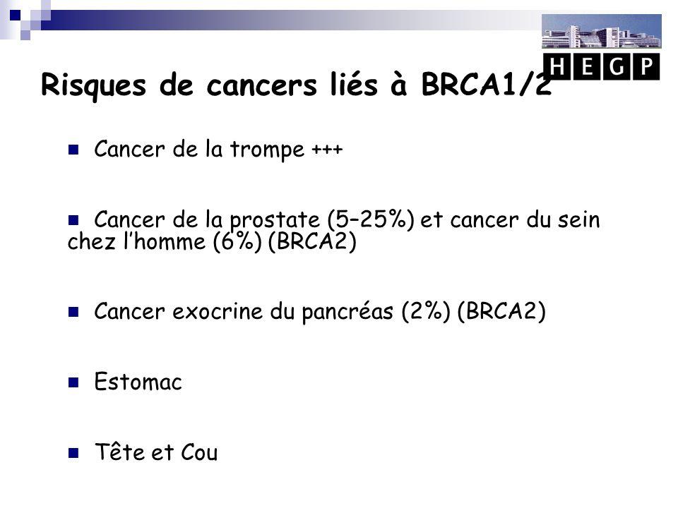 Risques de cancers liés à BRCA1/2