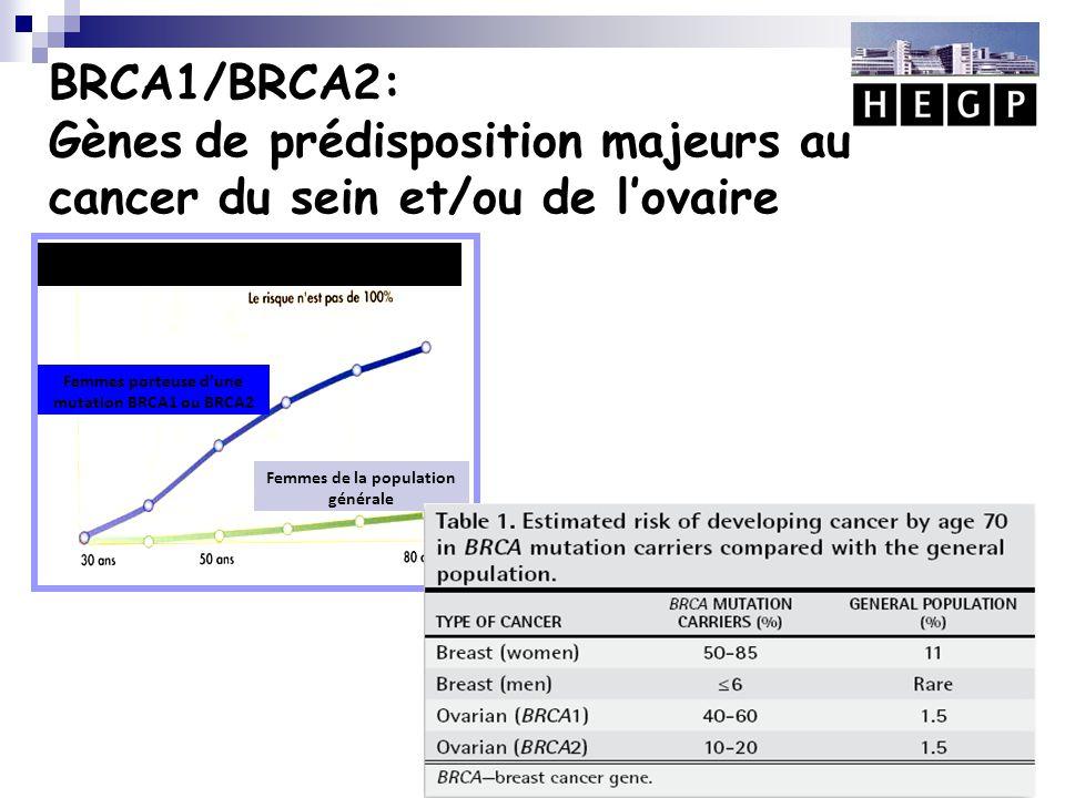 BRCA1/BRCA2: Gènes de prédisposition majeurs au cancer du sein et/ou de l'ovaire