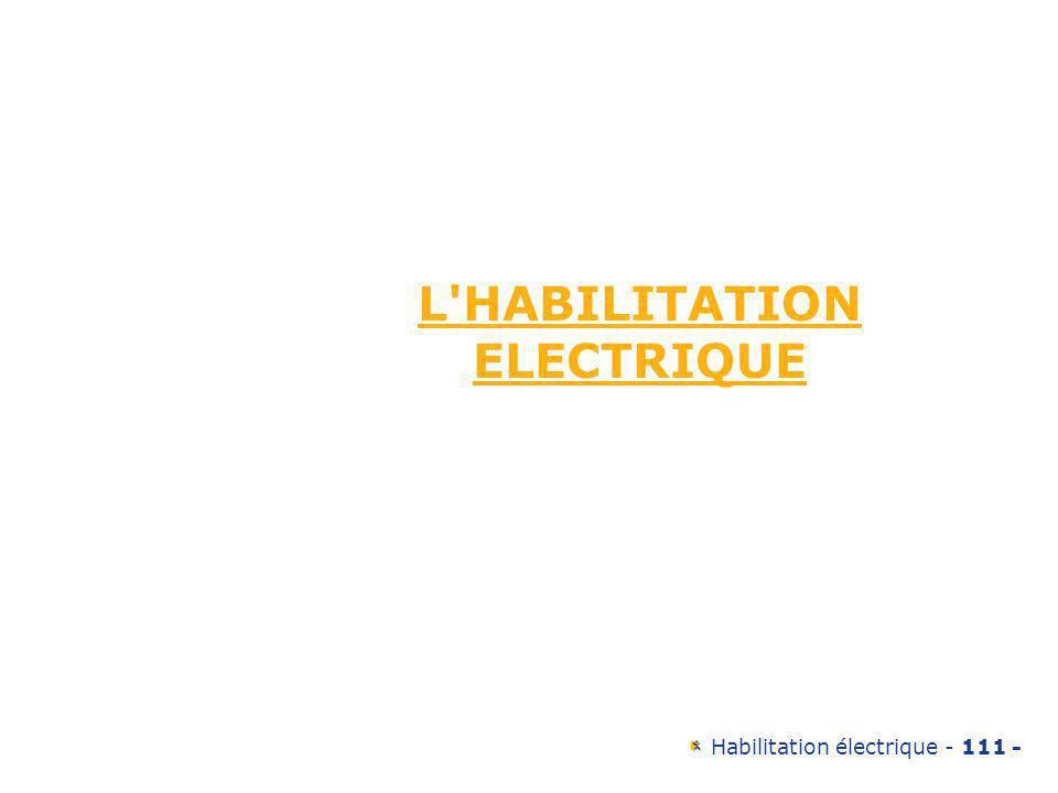 L HABILITATION ELECTRIQUE