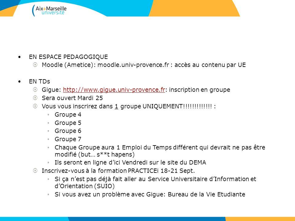 EN ESPACE PEDAGOGIQUE Moodle (Ametice): moodle.univ-provence.fr : accès au contenu par UE. EN TDs.