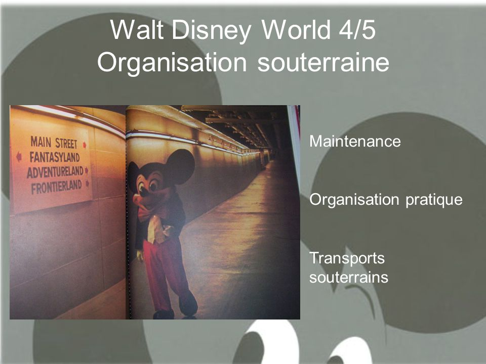 Walt Disney World 4/5 Organisation souterraine